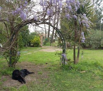 Habitación c/baño privado en casa con gran jardin - Neptunia