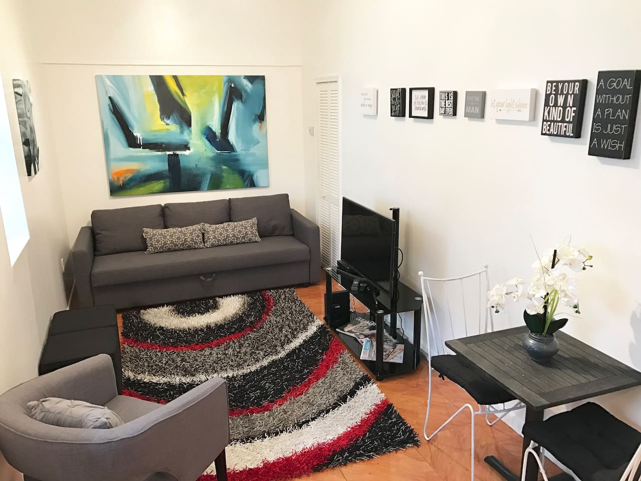New Ikea Sleeper Sofa; Flat-Screen television with Netflix; private high speed WiFi  signal throughout apartment and outdoor area