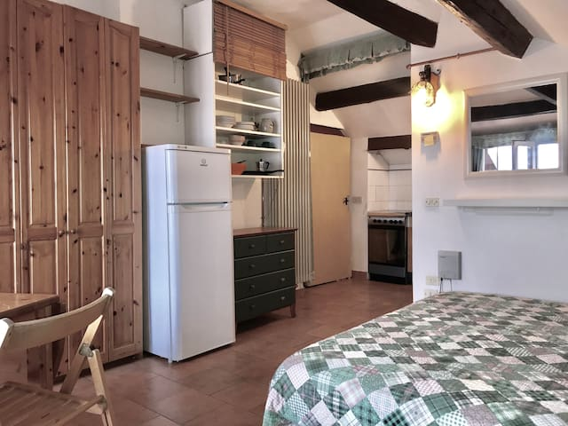 Small studio with kitchenette (Mansarda NW)
