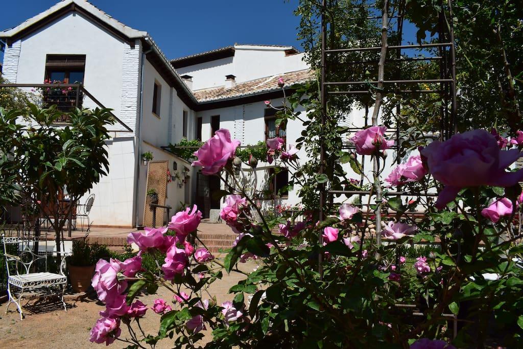 Le jardin et le Carmen