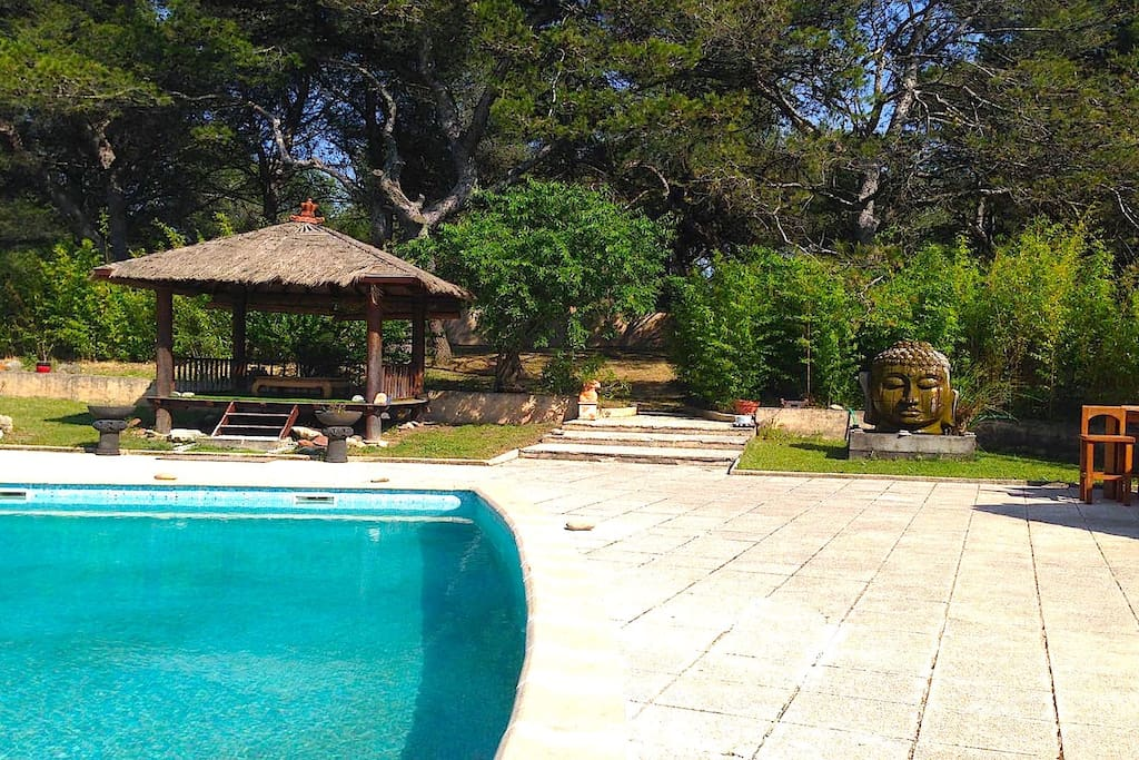 Villa Cicada - Your private swimming pool with large deck area and numerous sun chaises