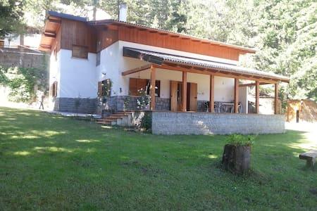 Villa nel parco della Sila sul lago Arvo  . - Lorica - Chalupa