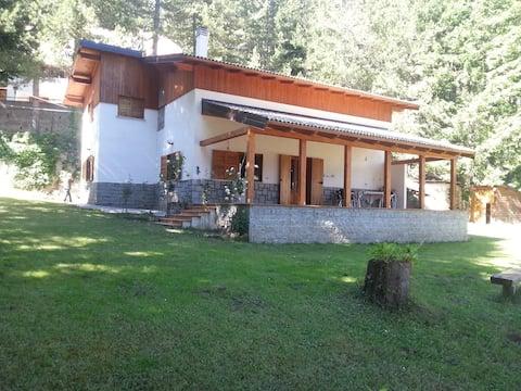 Villa nel parco nazionale  della Sila lago Arvo  .