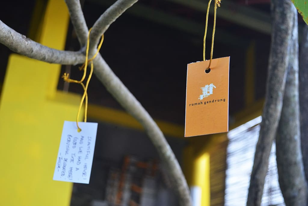 Wish Tree inspired by Yoko Ono. A hang tag for guests to write their opinion about the city.