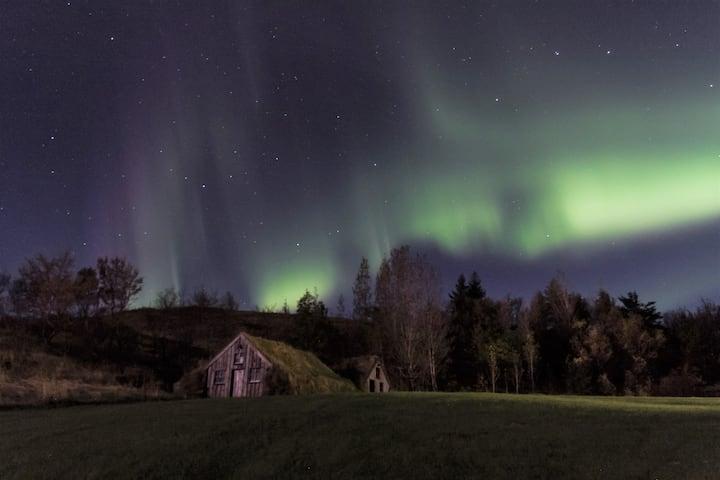 Dalshöfði Guesthouse-Twin room