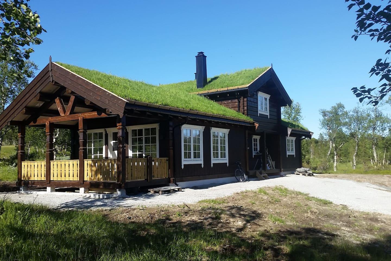Nybygd hytte