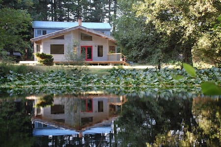 Dragonfly Pond on Orcas Island - Eastsound