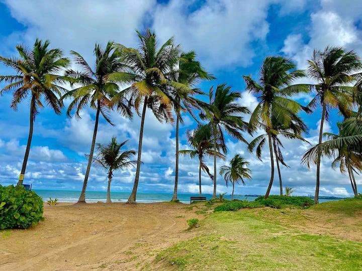 STEPS to the BEACH and POOL - Koquí Beach House