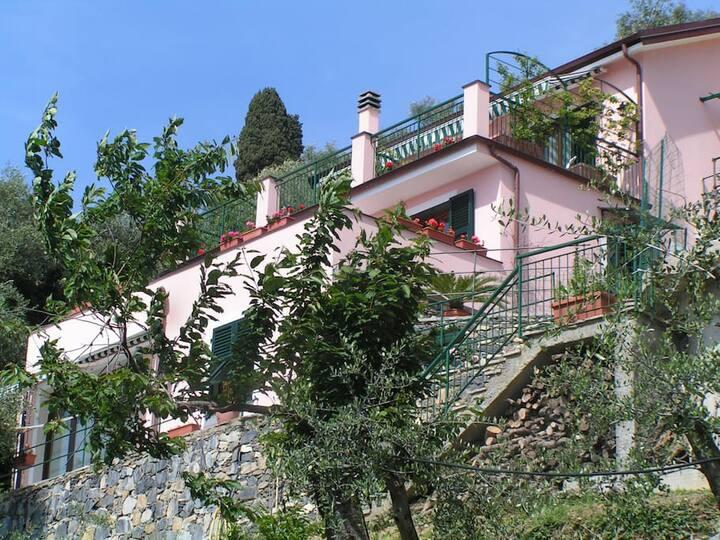 """""""Poggio Ulivi"""" ❀ Relax, Peace & Nature"""