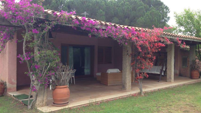 Villa Gazania - Baja Sardinia - Villa