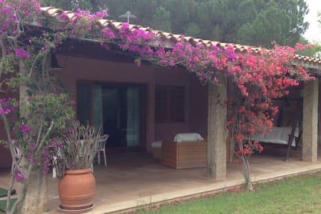 Villa Gazania - Baja Sardinia