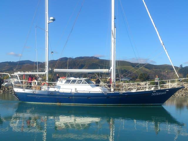 Best views in the Abel Tasman National Park