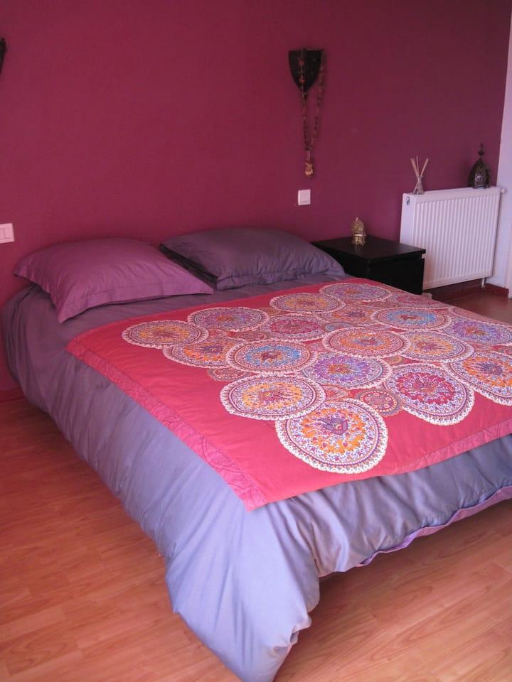 Appartement de 66 m2 au RDC