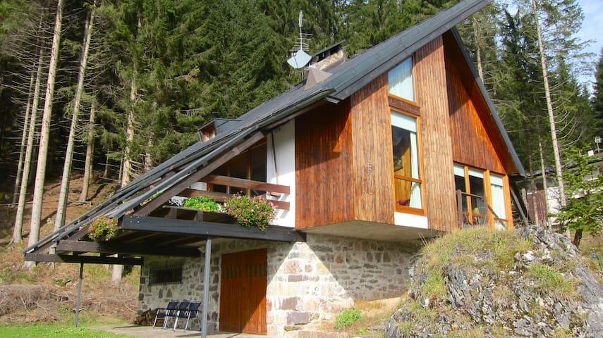 Chalet in Trentino, nelle Dolomiti