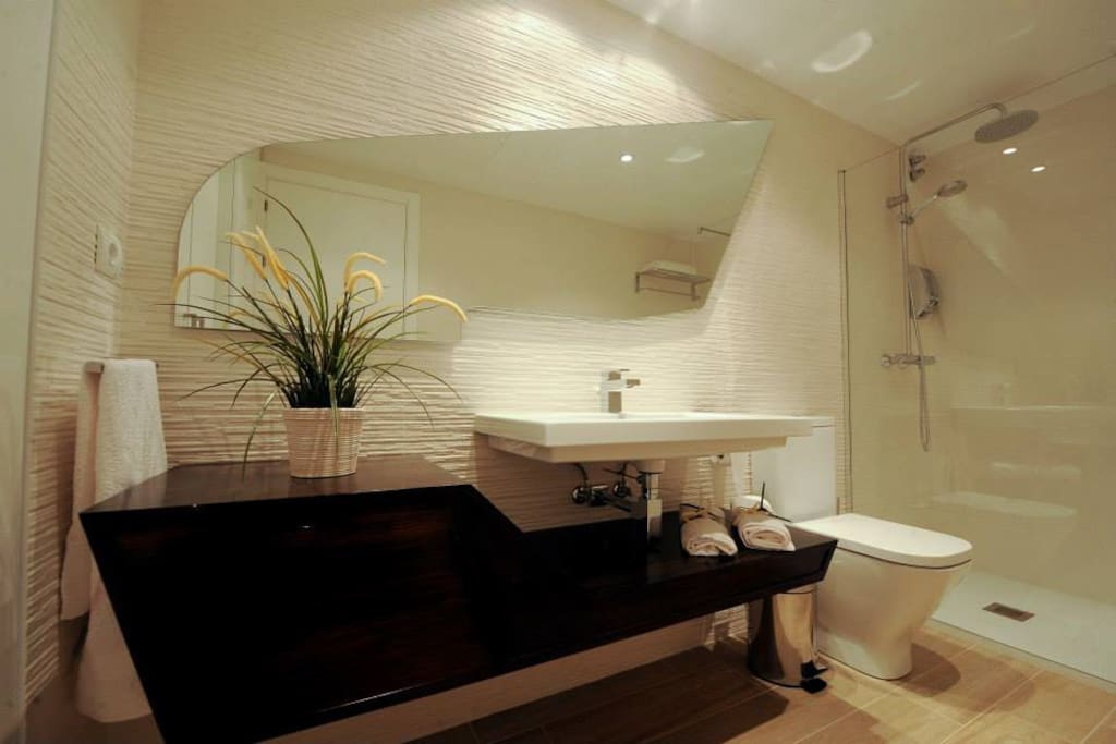 Cuarto de baño, apartamento Buñuel.