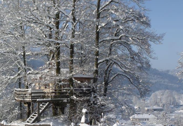 Nuit insolite dans une Cabane dans les arbres - Ferdrupt - Dům na stromě