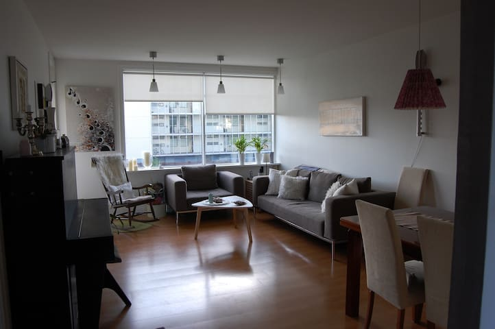 Beautiful and cozy apartment in a good location - Reykjavík - Appartement