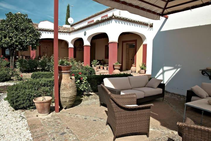 Beautiful cortijo in olive grove