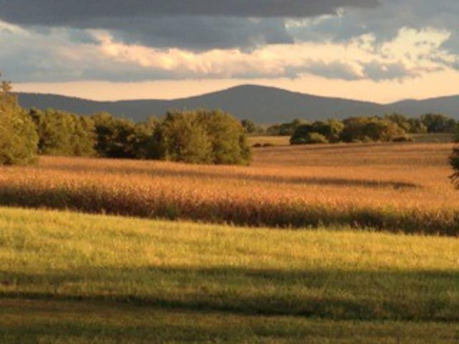 Views south towards Blue Ridge and Massanutten