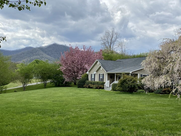 The Wood - Centrally Located Home in the Heart of the Smokies! Bring your Pet!