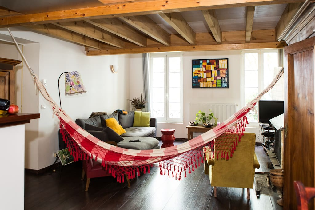 The hammock in the living room