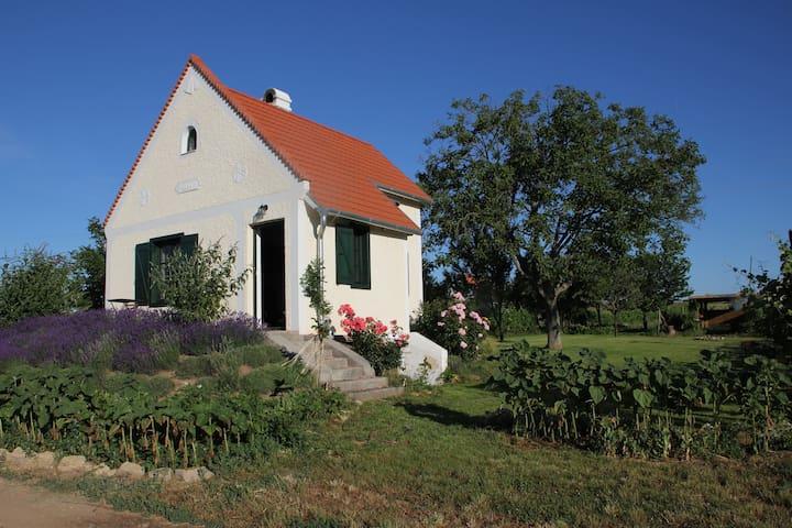 Lavender Cottage - Aszófő - Houten huisje