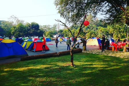 Chiku Orchard Camping - Thane - Σκηνή