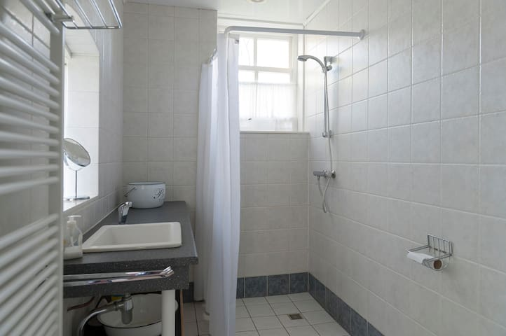 Gezamenlijke badkamer (voorhuis)