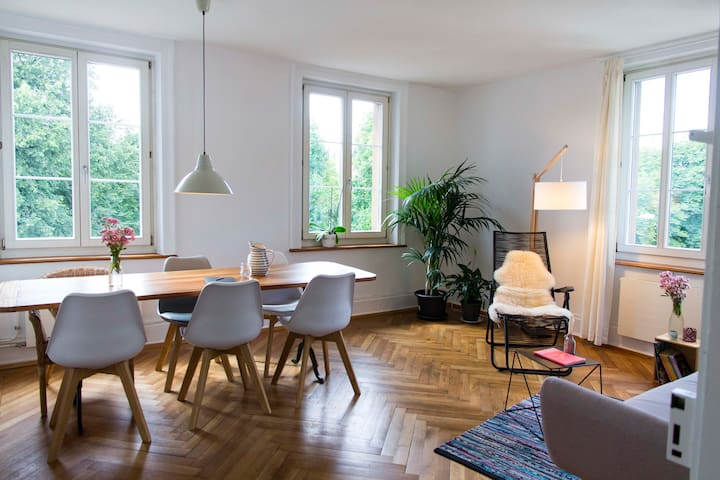 cozy apartment, near old town - Luzern - Appartement