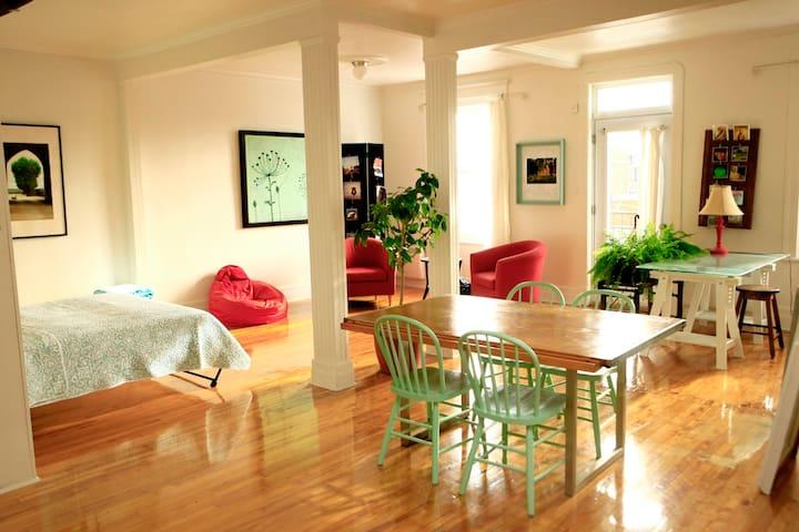 Grand studio bien éclairé idéal en couple ou seul