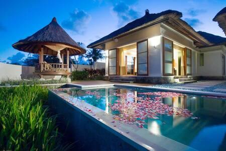 Amazing 1 Bedroom Villa in Sanur