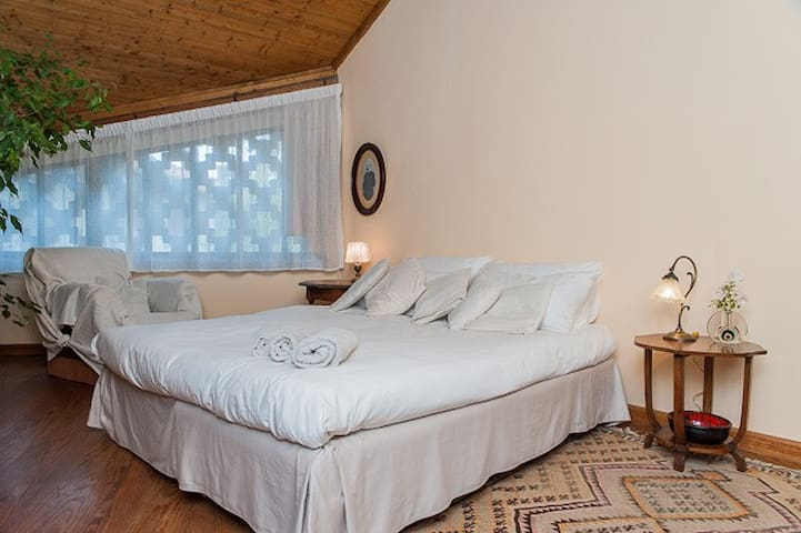 Country house on the hills  - Pino Torinese - Bed & Breakfast