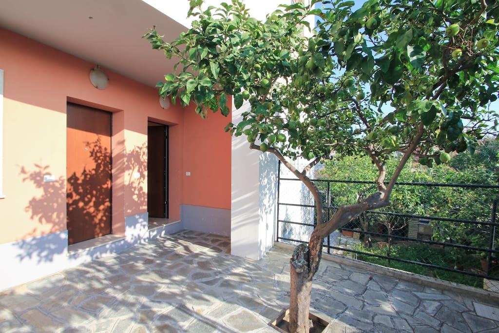 l'ingresso indipendente della casa, in un cortile tranquillo / our courtyard