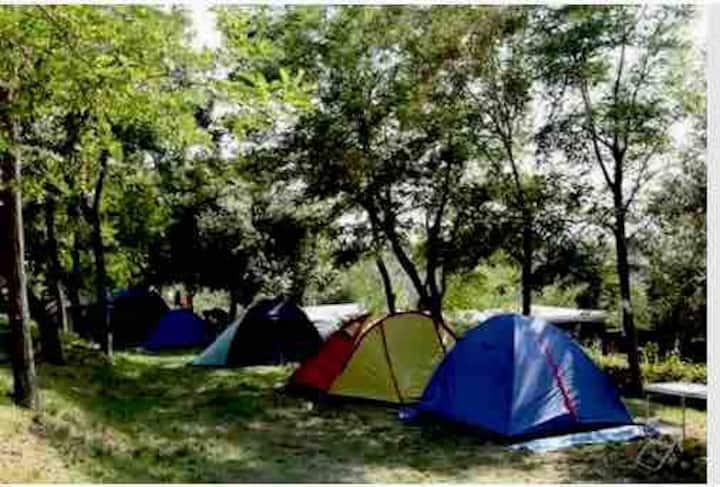Camping Quinta do Vale II