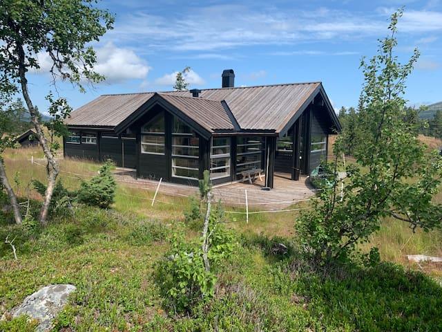 Cozy, modern, family cabin w/lots of light + sauna