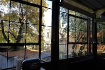 This is the view of the courtyard from the kitchen.