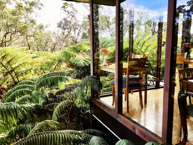 Have you ever dreamt of what it is like to live in a rainforest? This is your chance! Get yourself a room with big windows that overlook the lush native Hawaiian Rainforest.