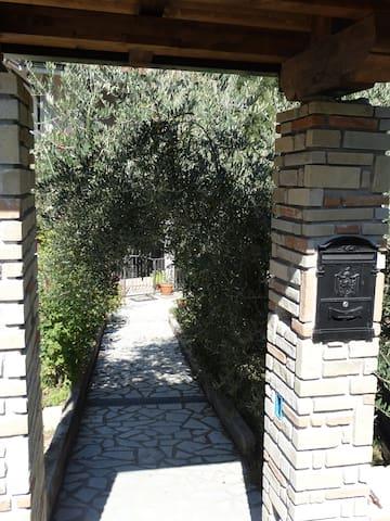 La dimora del Conte tra FUNGHI e CASTAGNE - Viggianello - Leilighet