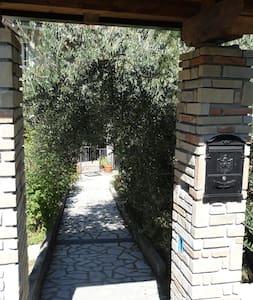 La dimora del Conte tra FUNGHI e CASTAGNE - Viggianello