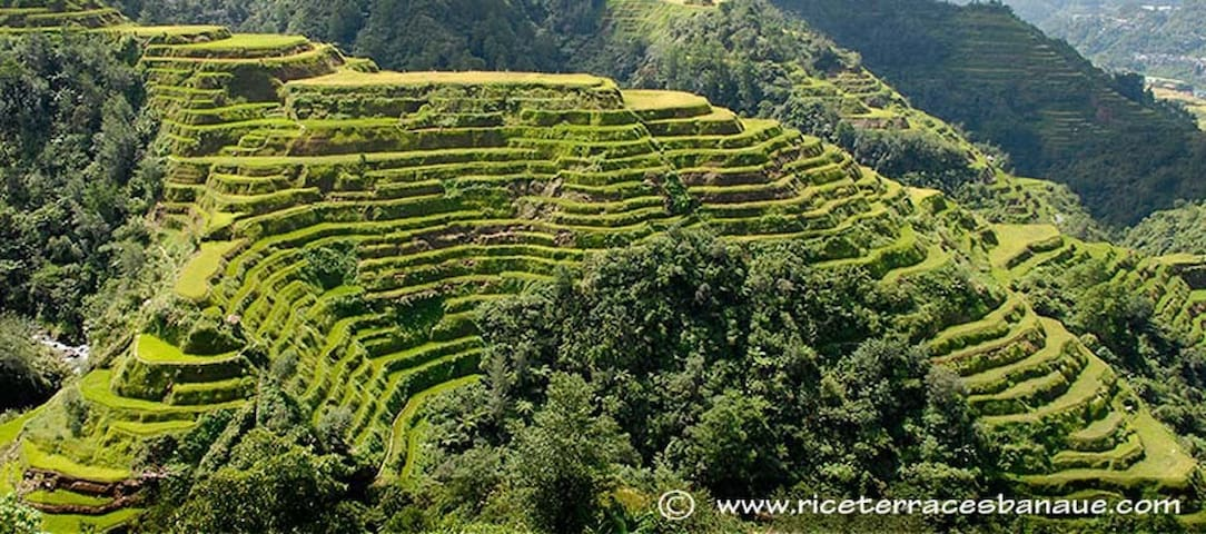 Your Home Away from home in Banaue