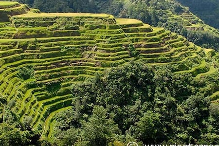Your Home Away from home in Banaue - Banaue