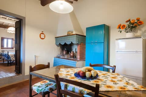 Granny Rose, Apartment in ancient Tuscan village