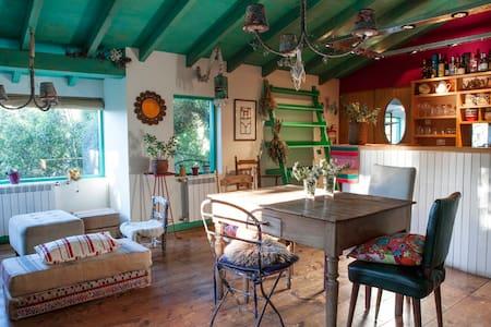 RATATOUILLE - San Carlos de Bariloche - House