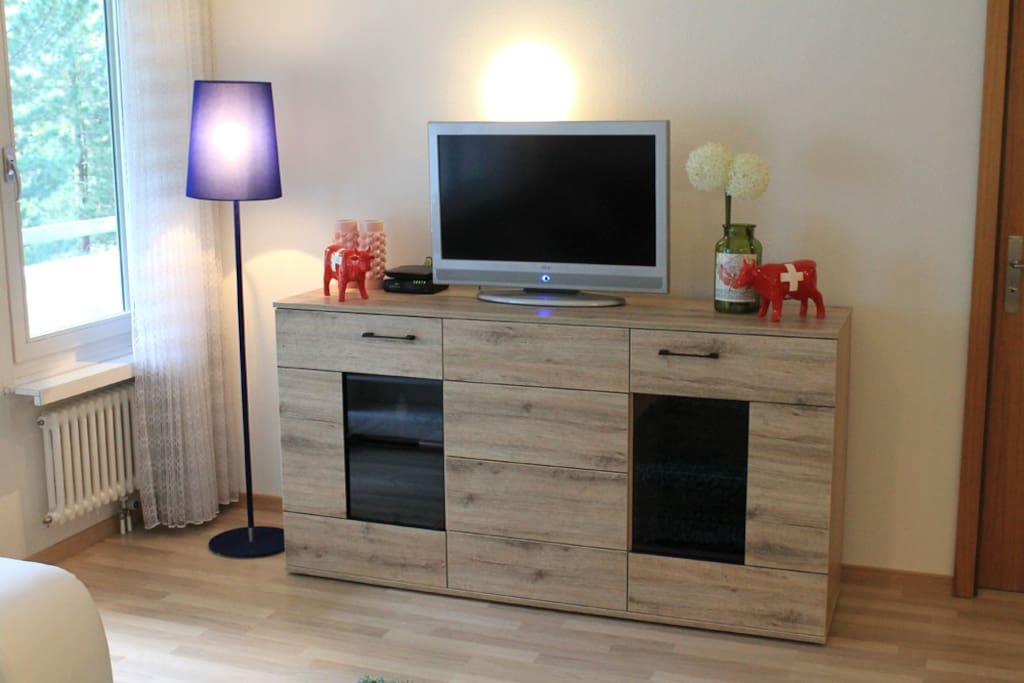 The TV Unit in lounge room.