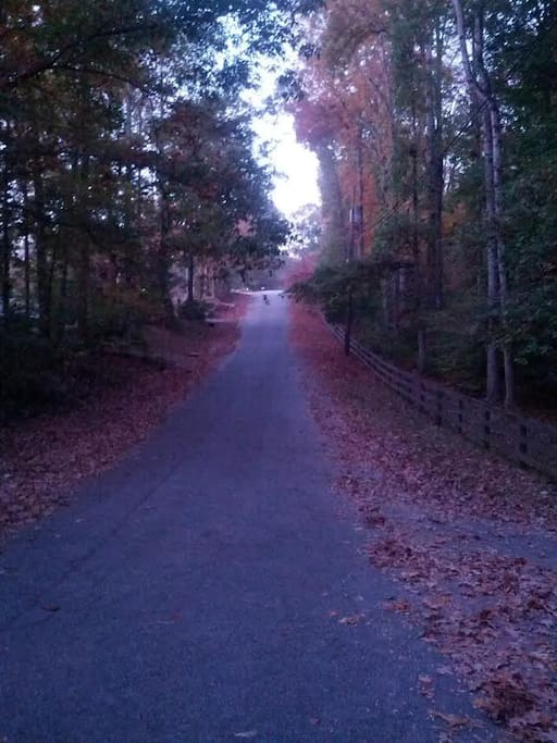 This street welcomes you to Lakepoint on the Saluda!