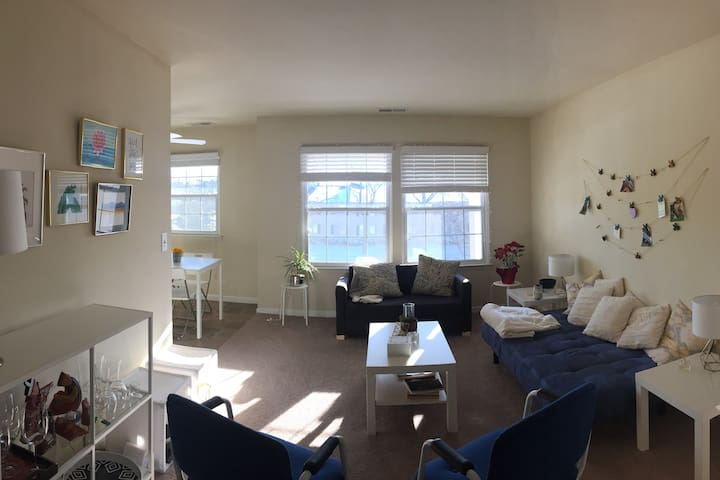 Spacious 2 Bedroom Private Apartment - Ann Arbor - Apartment