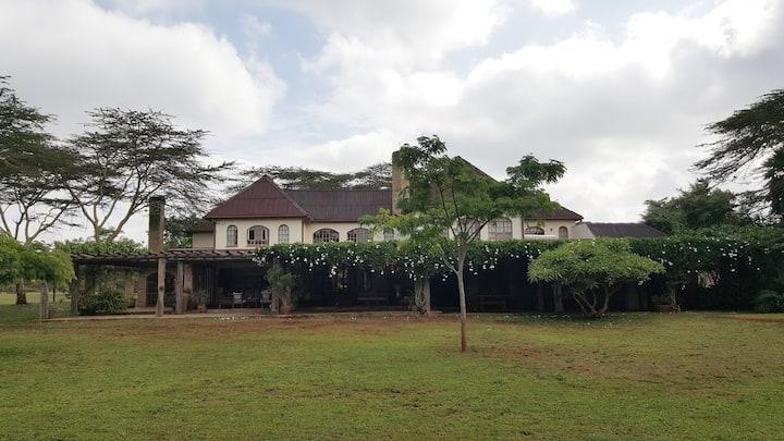 Casa Ya Ndoto (House of good dreams)- 2 Guestrooms