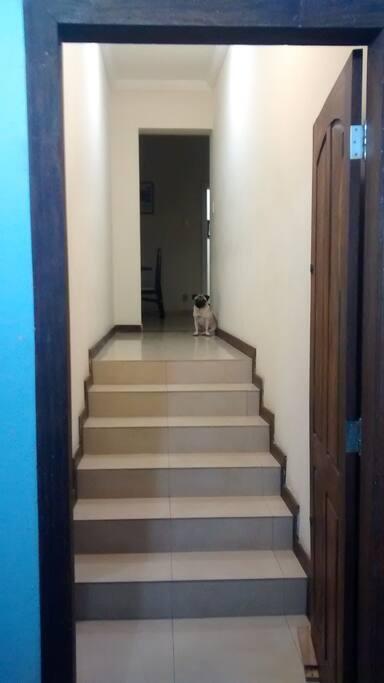 Corredor do quarto (e meu cachorro rs)