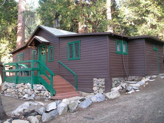 Cabin #1  Large Family Cabin - Angelus Oaks - Cabin
