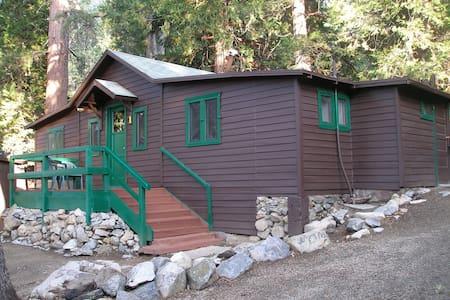 Cabin #1  Large Family Cabin - Kisház